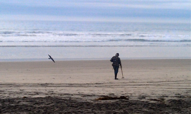 Old man with metal detector and seagull soaring behind
